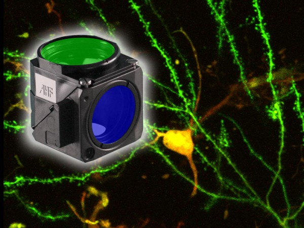 epi-fluorescence-filter-sets